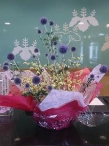 7月23日お花④