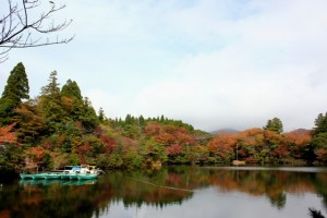 白雲の池①